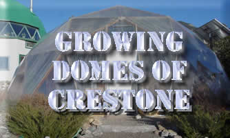 Growing Domes in Crestome